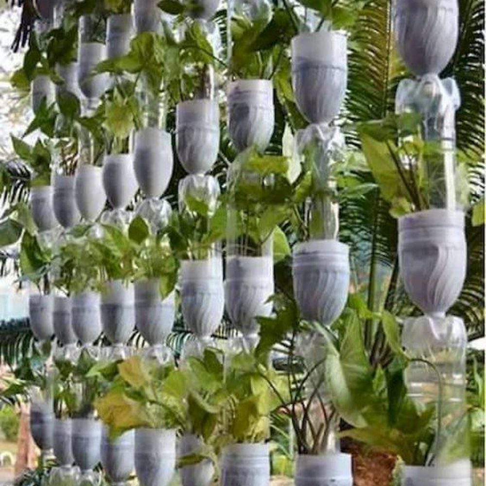 Recycle bottle turn into vertical garden