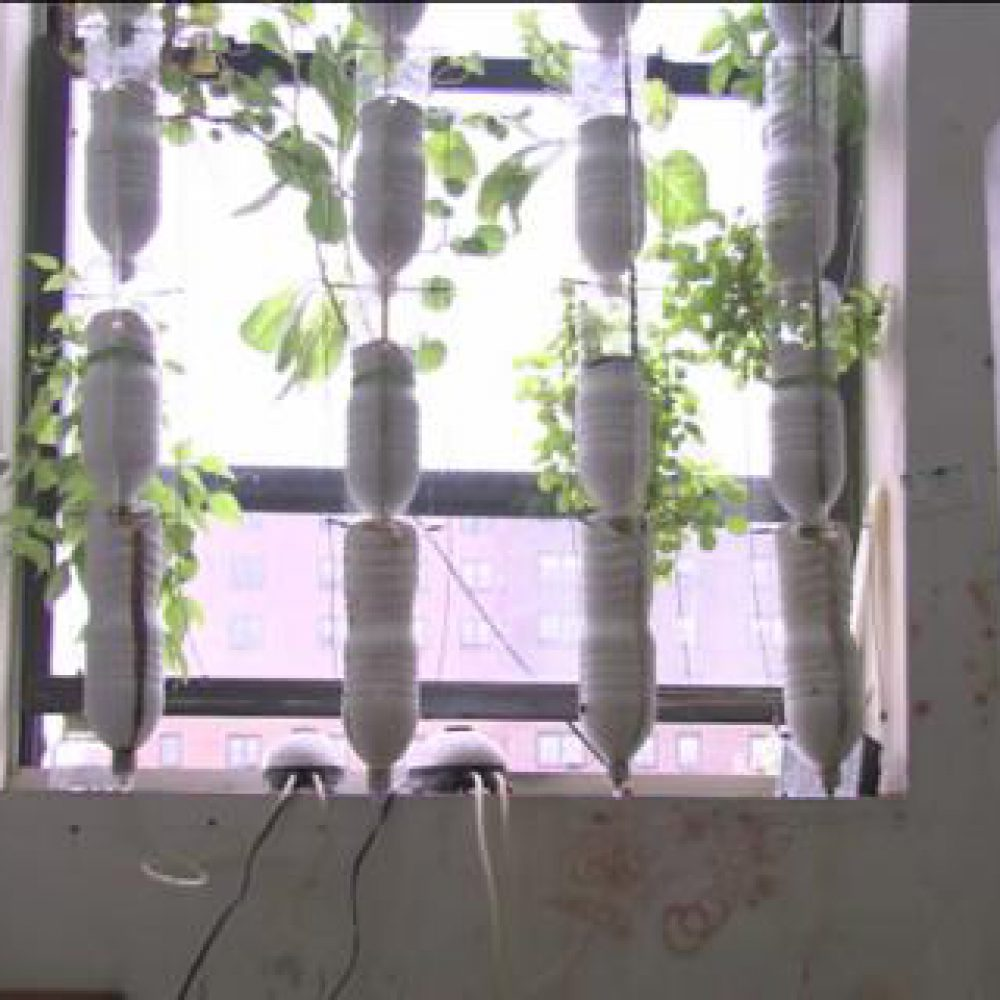 Vertical recycle bottles hydroponic set